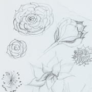image of Design drawing - floral mirror  by Sarah Howarth